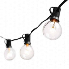 Rental store for BISTRO LIGHTS LED - BLACK CBL in Boise ID
